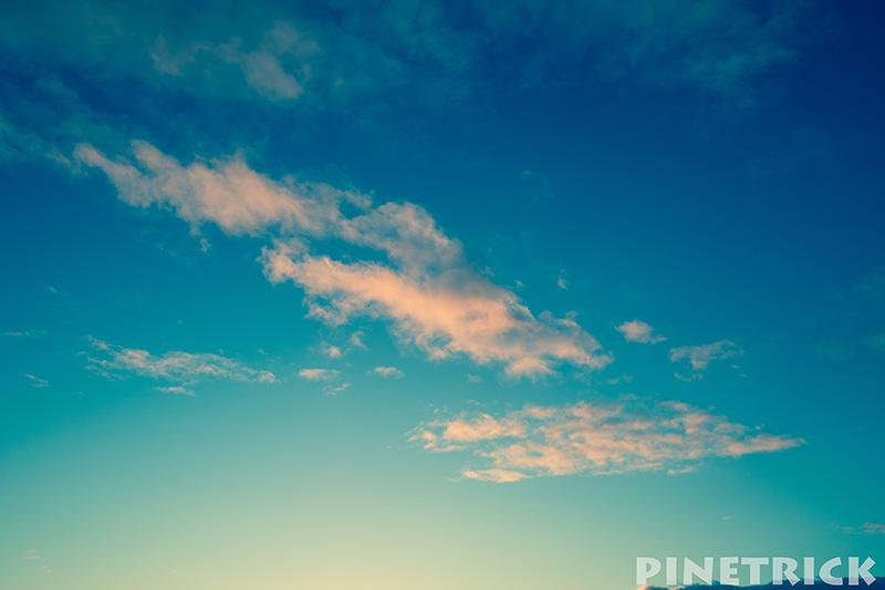 20160317_pinetrick