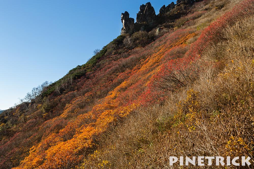 まねき岩と紅葉