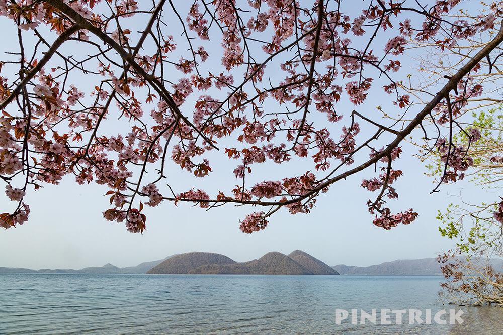 洞爺湖 桜 観光名所 さくら 北海道