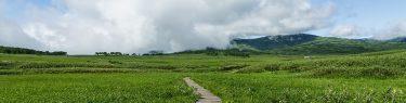 雨竜沼湿原 木道 草原