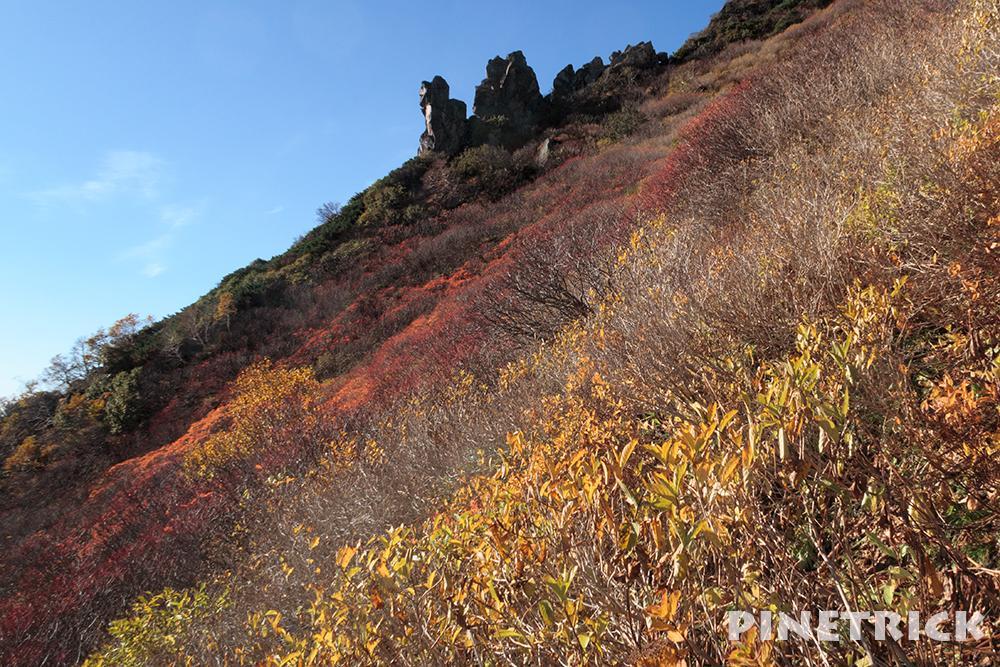 黒岳 まねき岩 紅葉