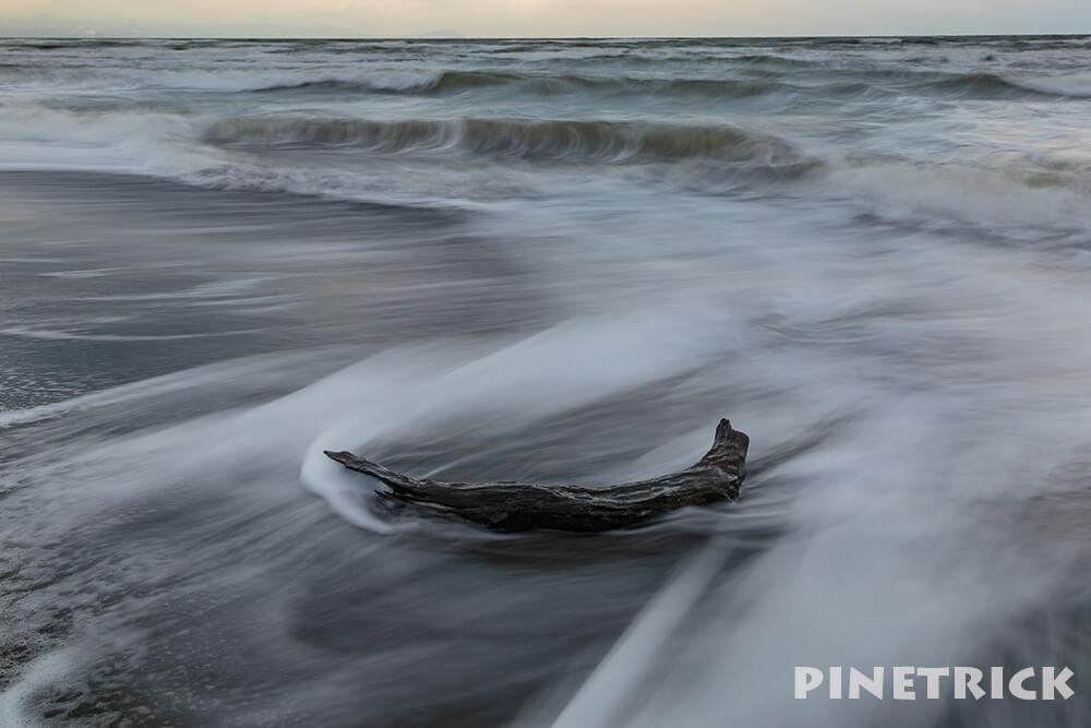 写真撮影 北海道 札幌市 流木 石狩 海岸 砂浜