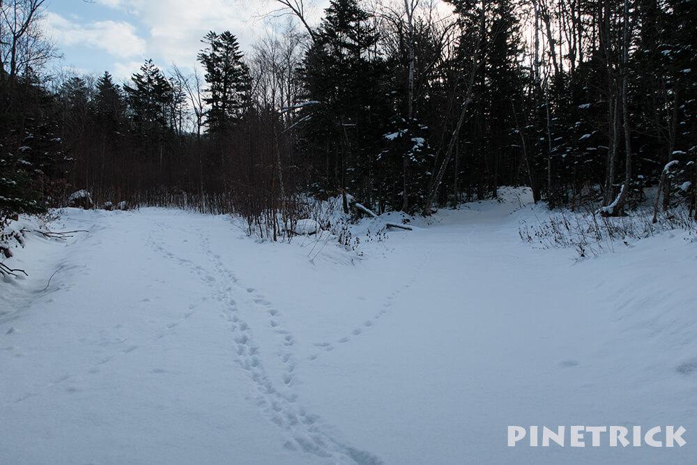 樽前山 支寒内 苔の洞門 山スキー