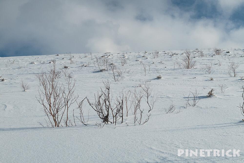 樽前山 溶岩ドーム 山スキー アイゼン 支寒内