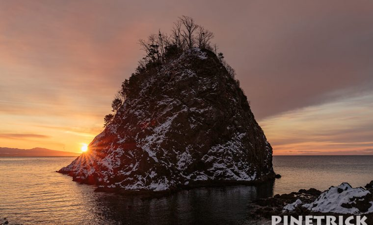 枯山水 日の出 岩 木 海
