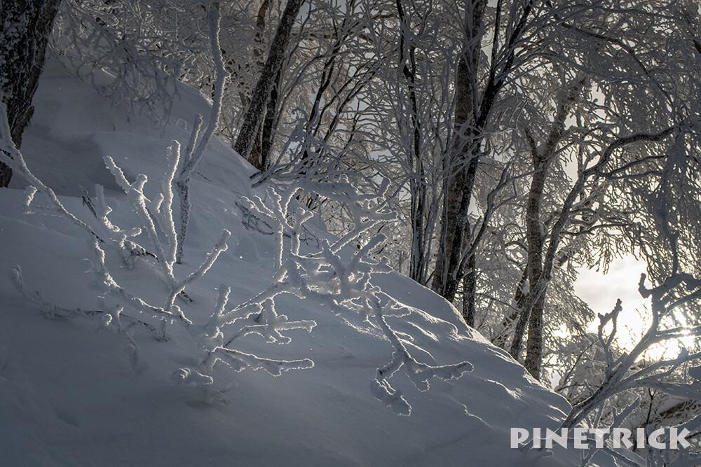風不死岳 北尾根 樹氷 登山