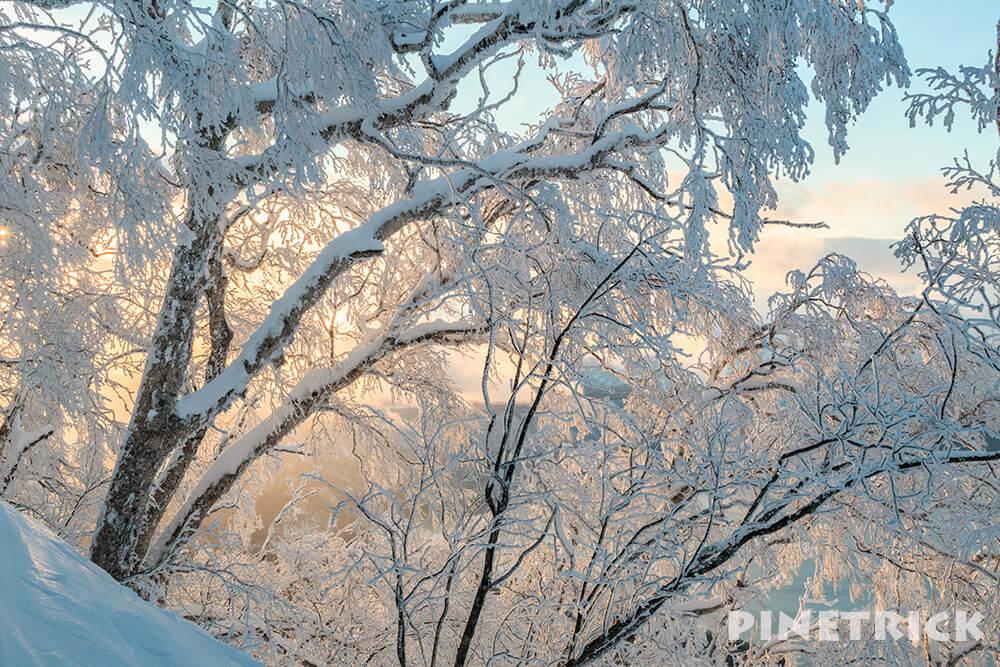 樹氷 夕日 北尾根 風不死岳