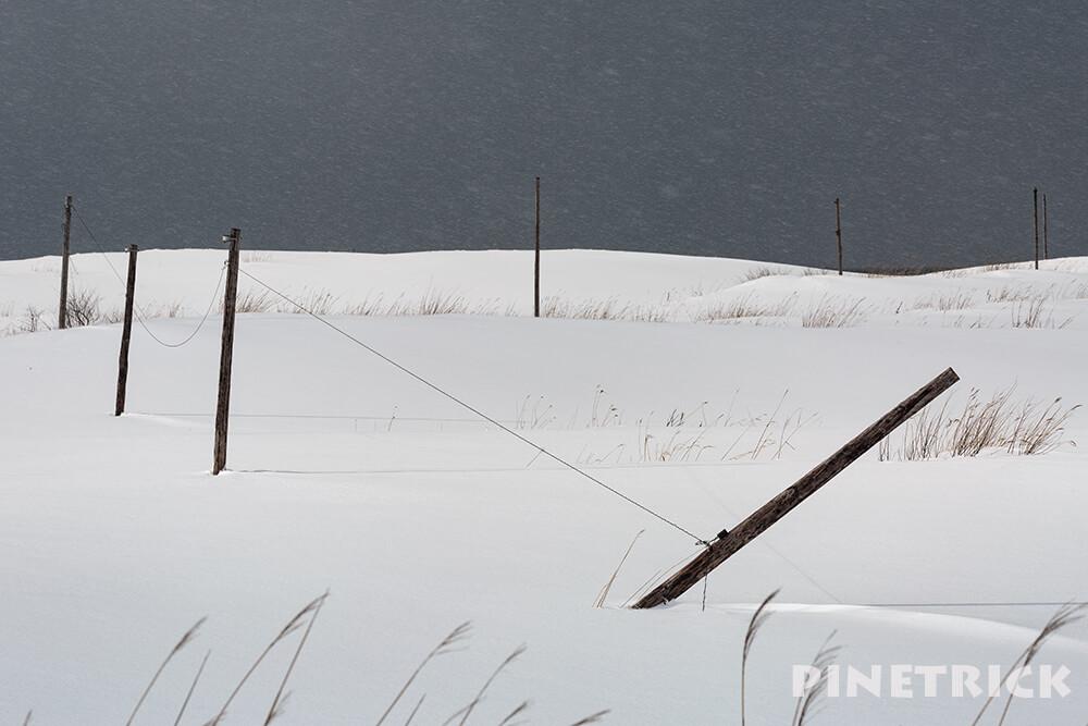 電柱 雪原 冬 雪