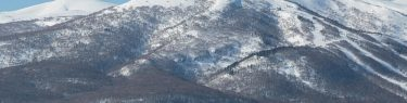 岩内岳 目国内岳 山スキー スノーキャット イワナイリゾート