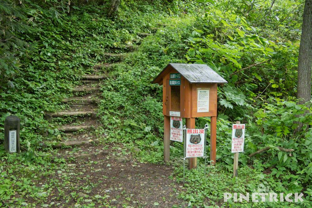 神居尻山 登山 Bコース 熊 道民の森 神居尻地区