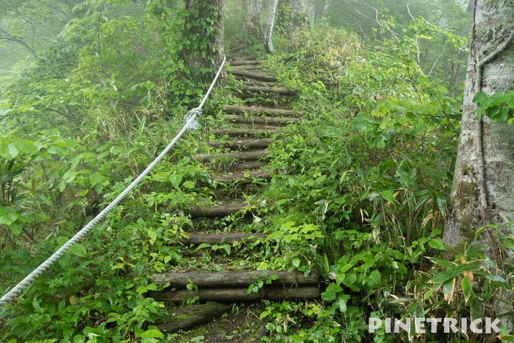 神居尻山 木階段 登山 Bコース