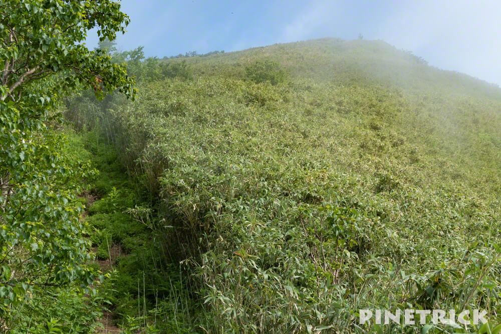 昆布岳 山頂 登山 7月