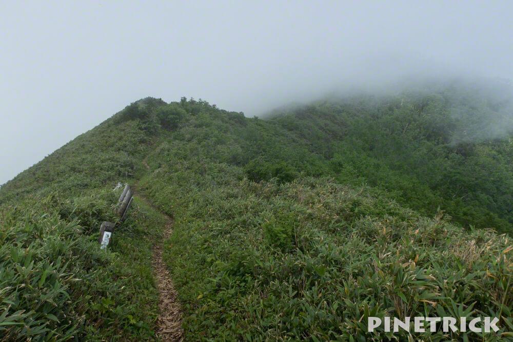 神居尻山 登山 Aコース ガス 稜線