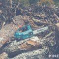 定山渓ダムの大型流木無料配布(薪ストーブ用)に行ってきた