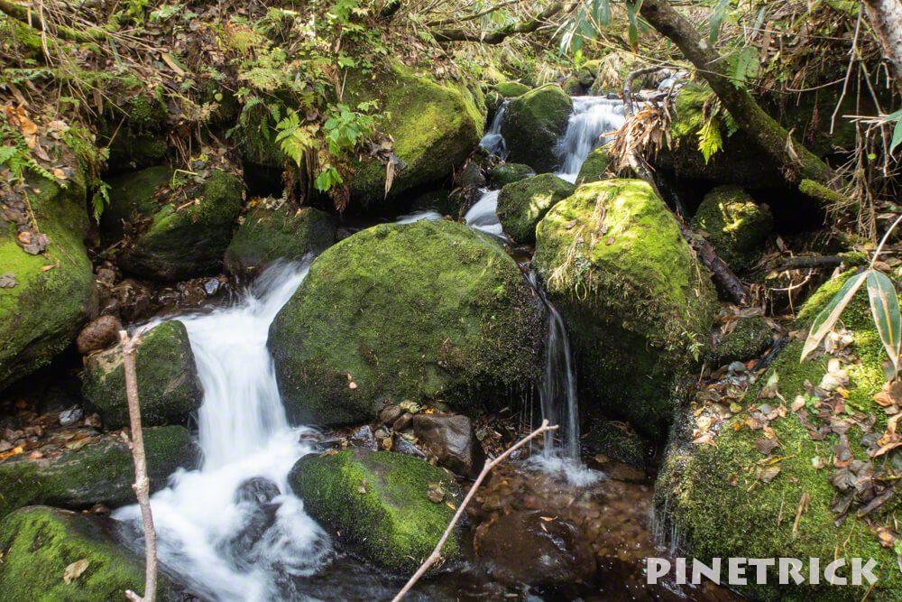 鏡沼 トレッキング ハイキング ニセコ町 湿原 58号ルート