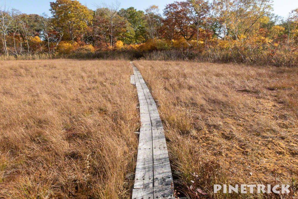 鏡沼 観光名所 木道 紅葉 10月 ニセコ町 トレッキング ハイキング