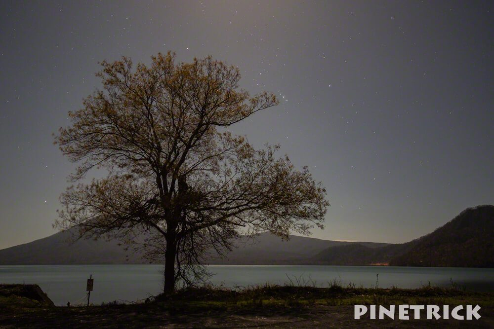 支笏湖 美笛 満月 木