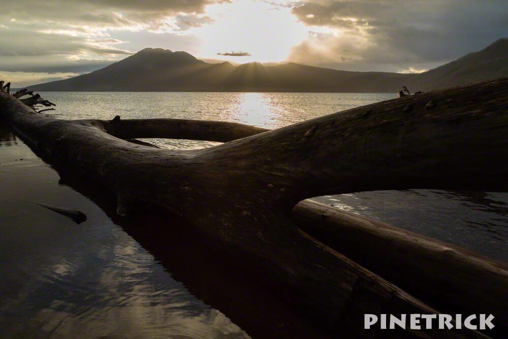 支笏湖 倒木 日の出 朝 風不死岳 美笛 樽前山