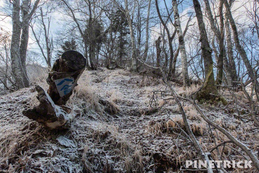 風不死岳 登山 台風被害 雪 11月 粉雪 標識 倒木