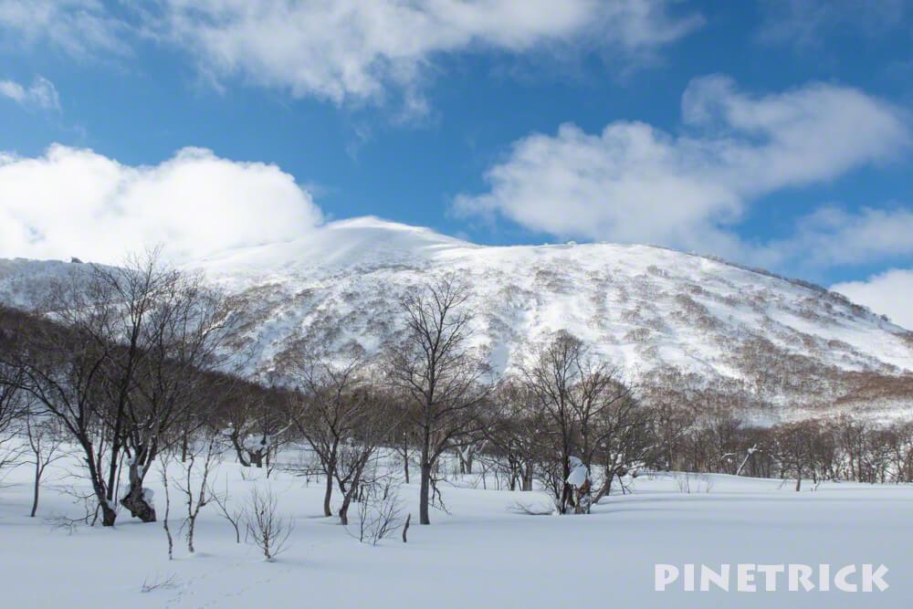ニセコアンヌプリ スキー場 スノーボード スキー ゴンドラ 山頂