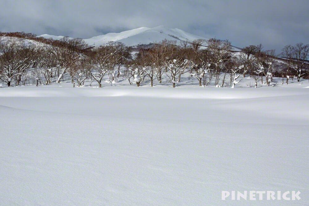 鏡沼 冬 雪原 ニセコ