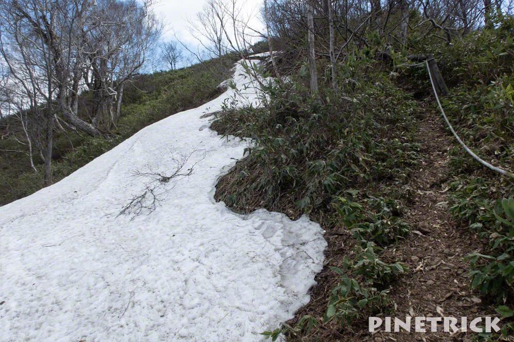 神居尻山 Bコース 倒木 階段 雪渓