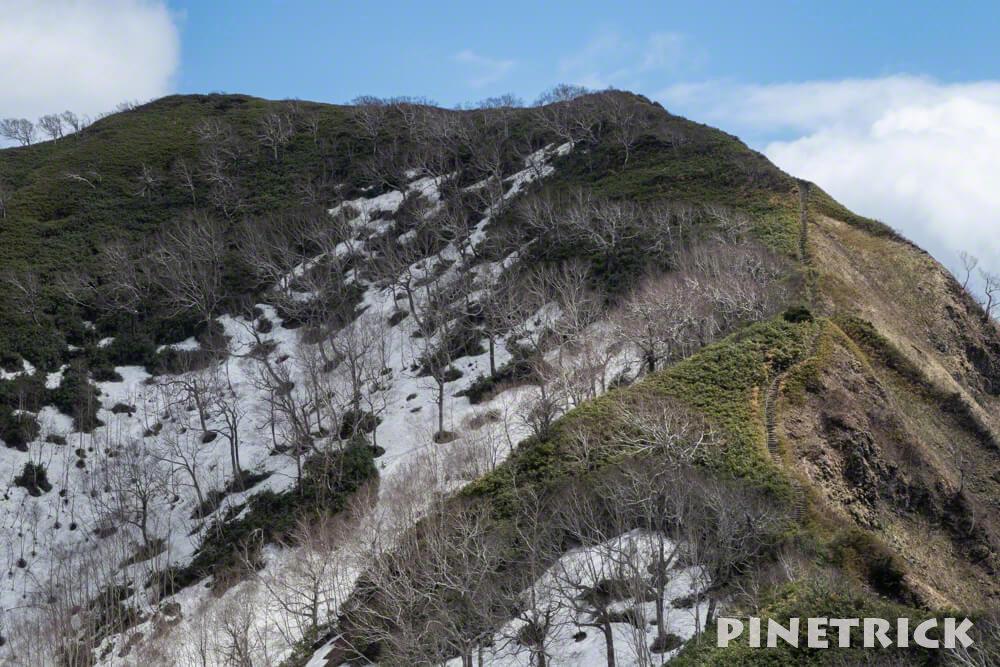神居尻山 Bコース 階段