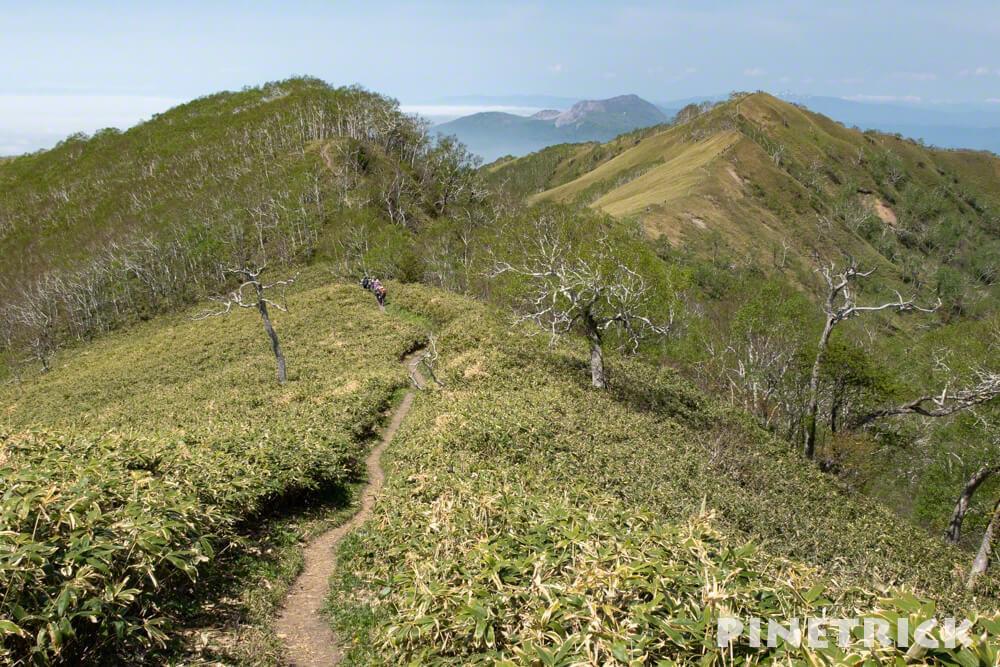 昭和新山 稜線 白樺 笹薮 伊達紋別岳