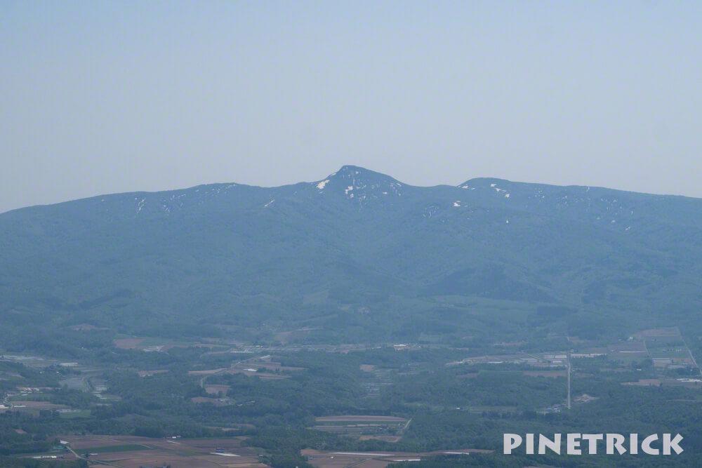 昆布岳 山頂 虫 5月 登山 ニセコアンヌプリから