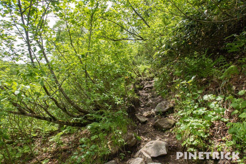 空沼岳 登山 坂道 樹林帯 日差し 熱い