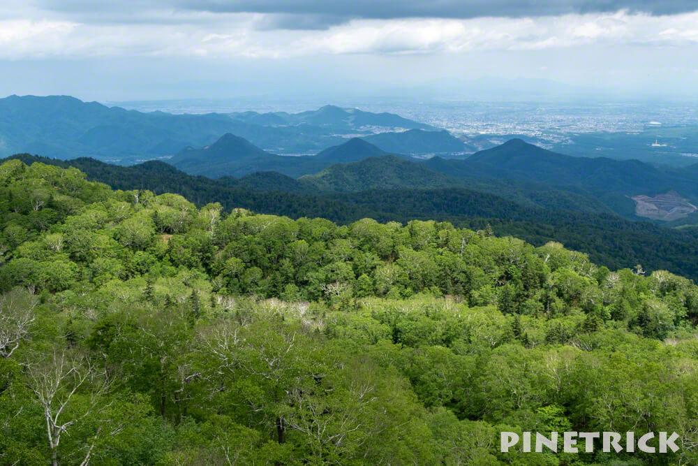 空沼岳 登山 札幌市街 展望 樹林帯