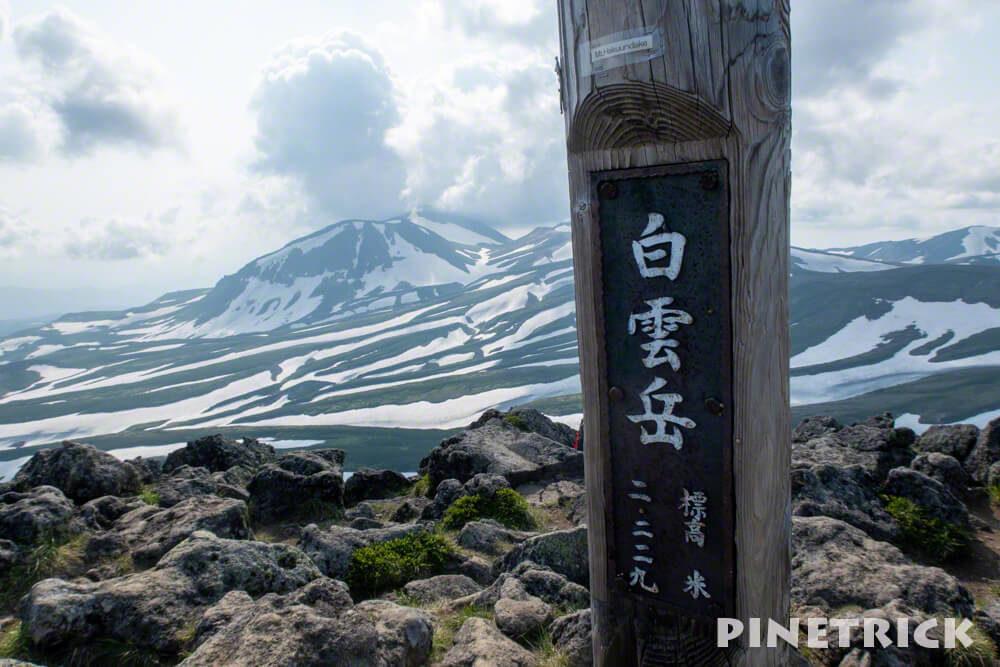 白雲岳 山頂 ゼブラ雪渓 1時間 テント場 避難小屋から