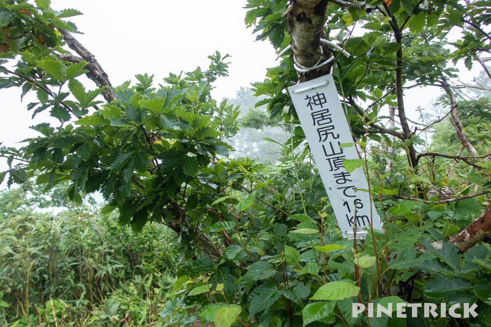 神居尻山 道民の森 トレッキング Bコース 稜線 ガス