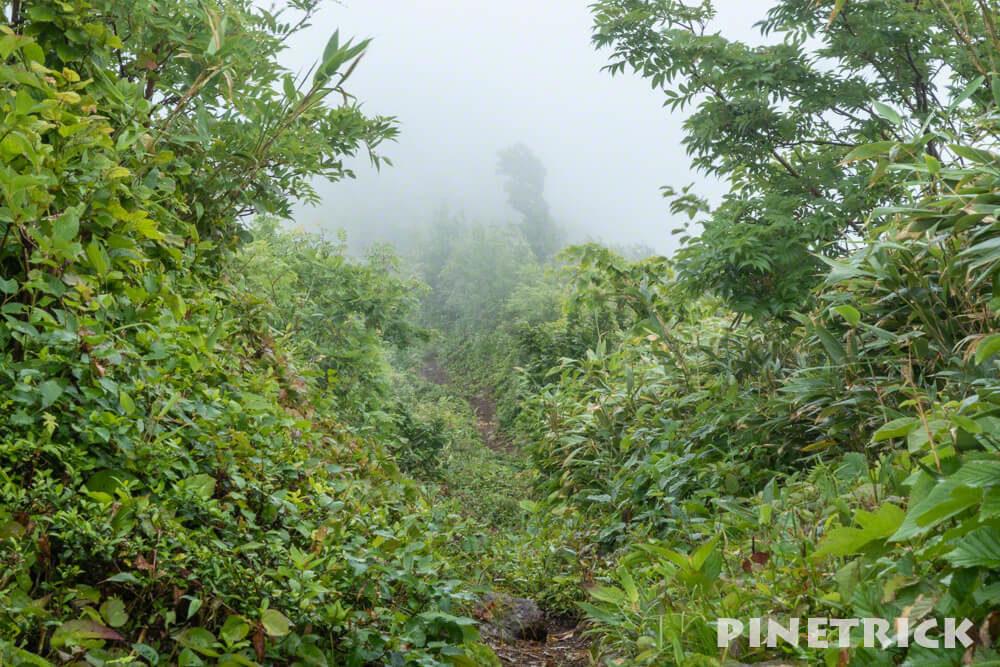 神居尻山 道民の森 Bコース 強風 登山