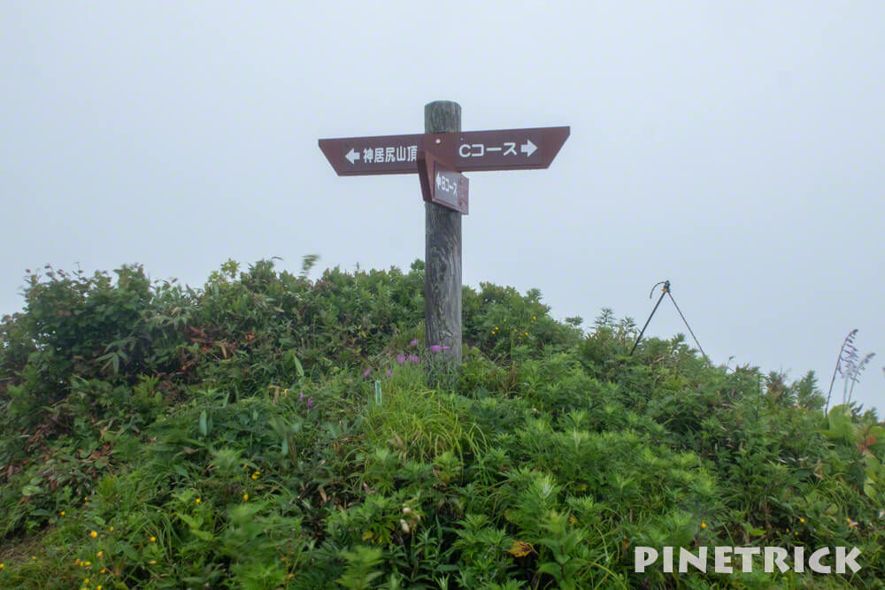 BCコース分岐 神居尻山 道民の森 Bコース 登山