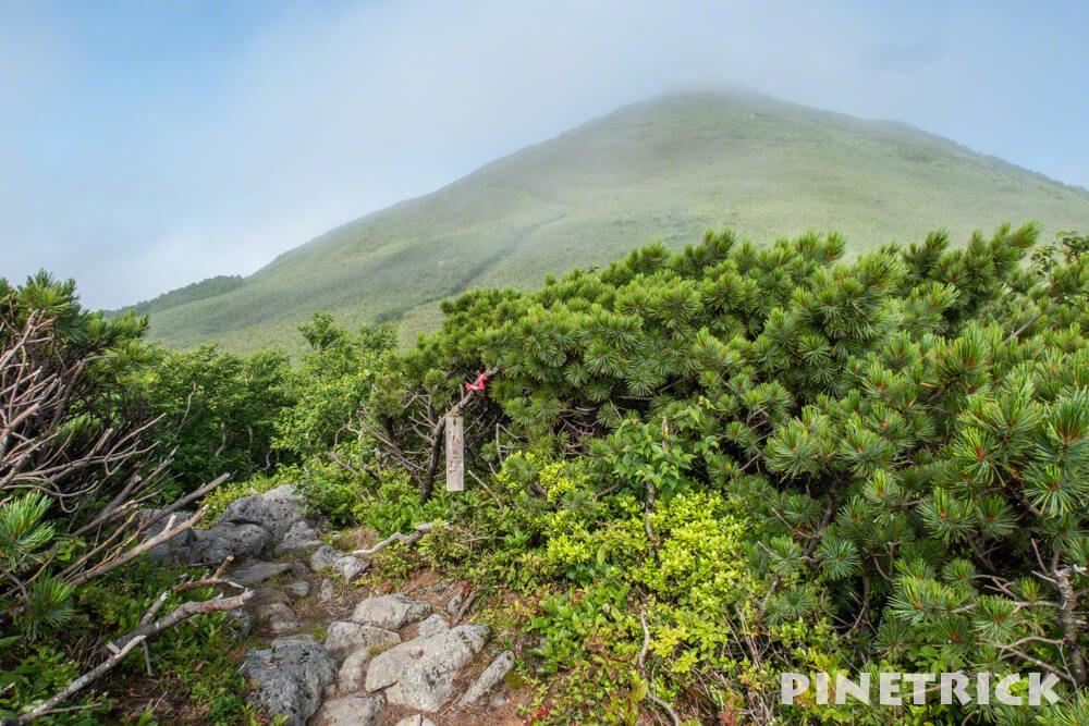 目国内岳 8合目 登山 山頂