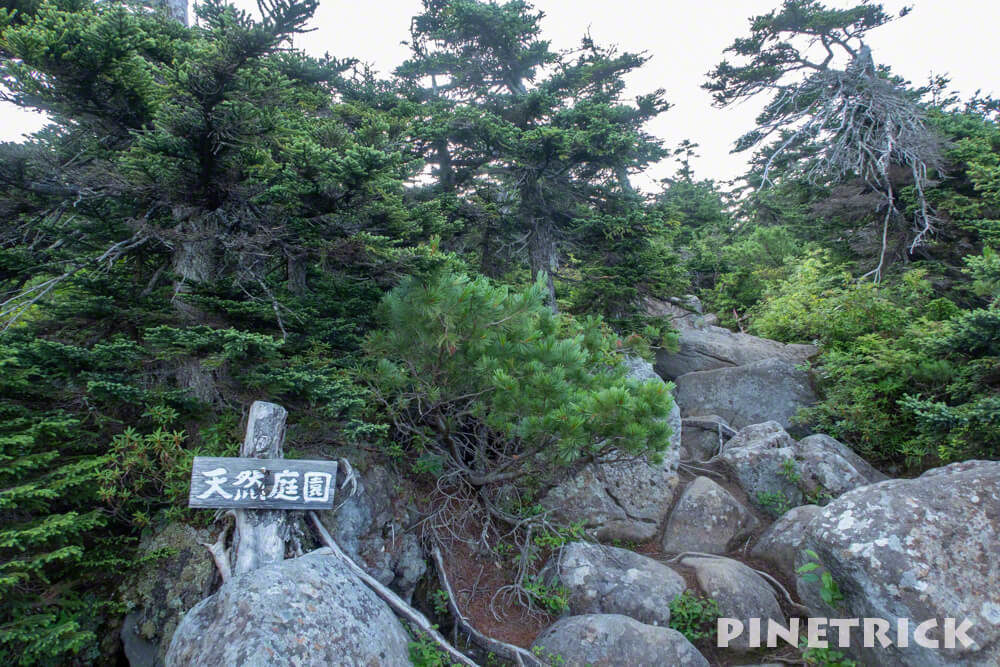 美瑛富士 天然庭園 岩 登山 十勝岳連峰 避難小屋
