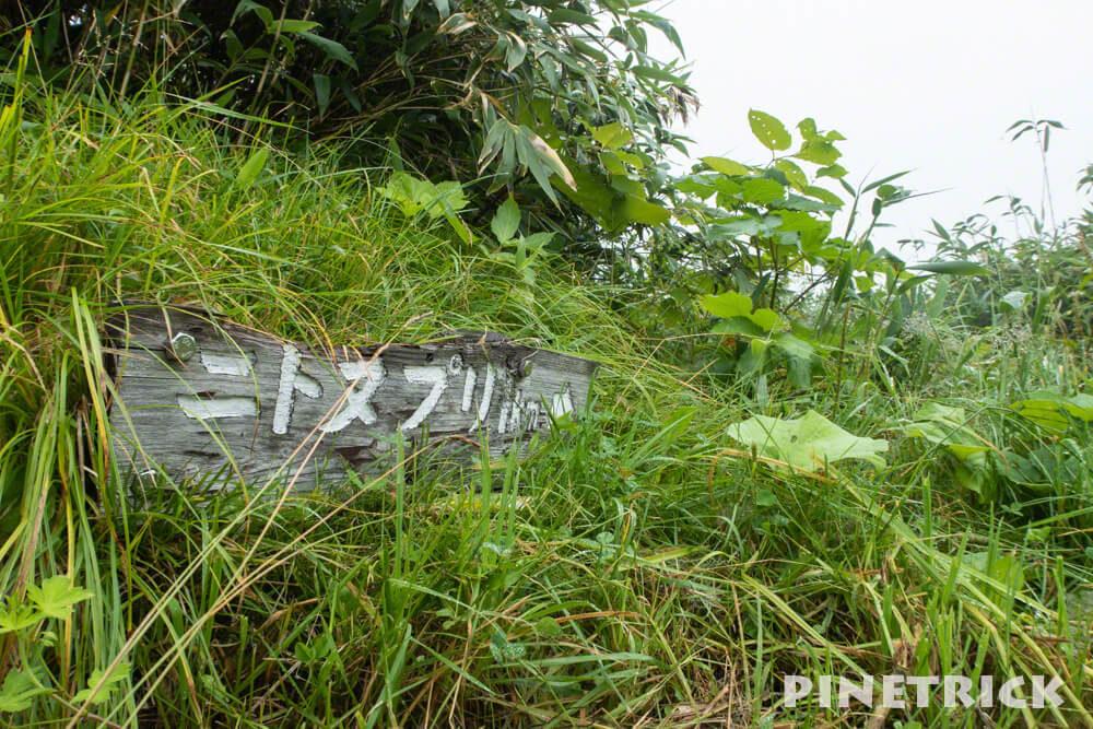 ニセコ 登山 ニトヌプリ ニセコパノラマライン トレッキング アクティビティ