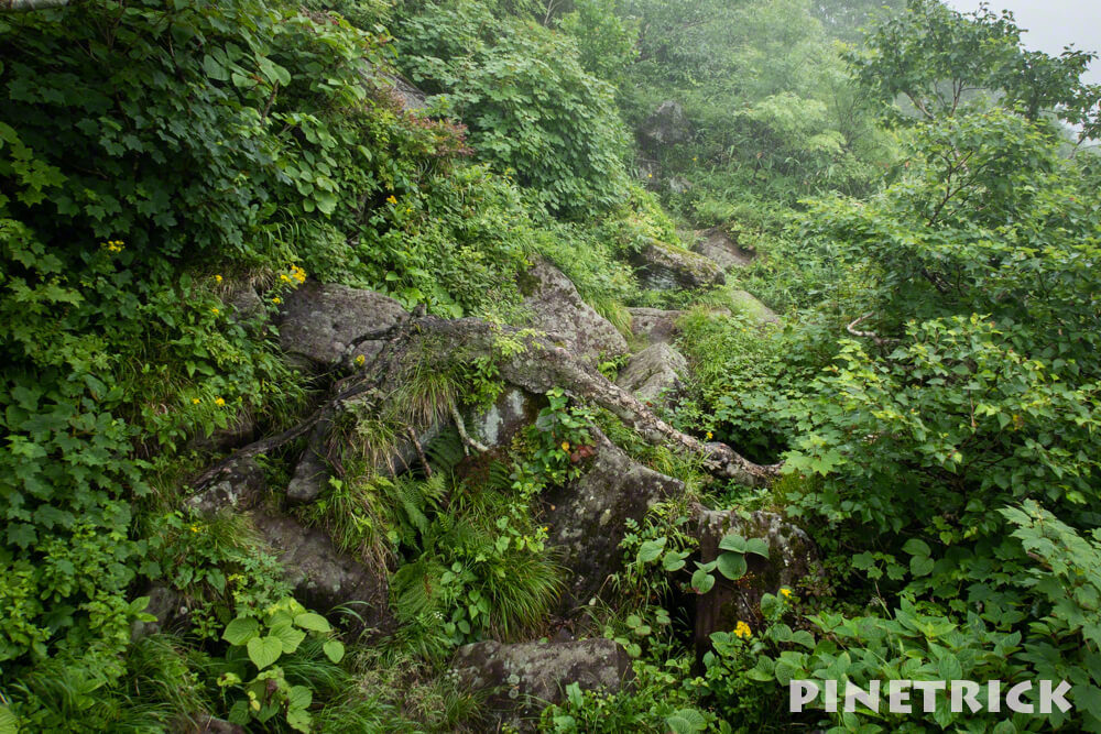 ニトヌプリ 登山道 北海道 ニセコ 岩場 岩