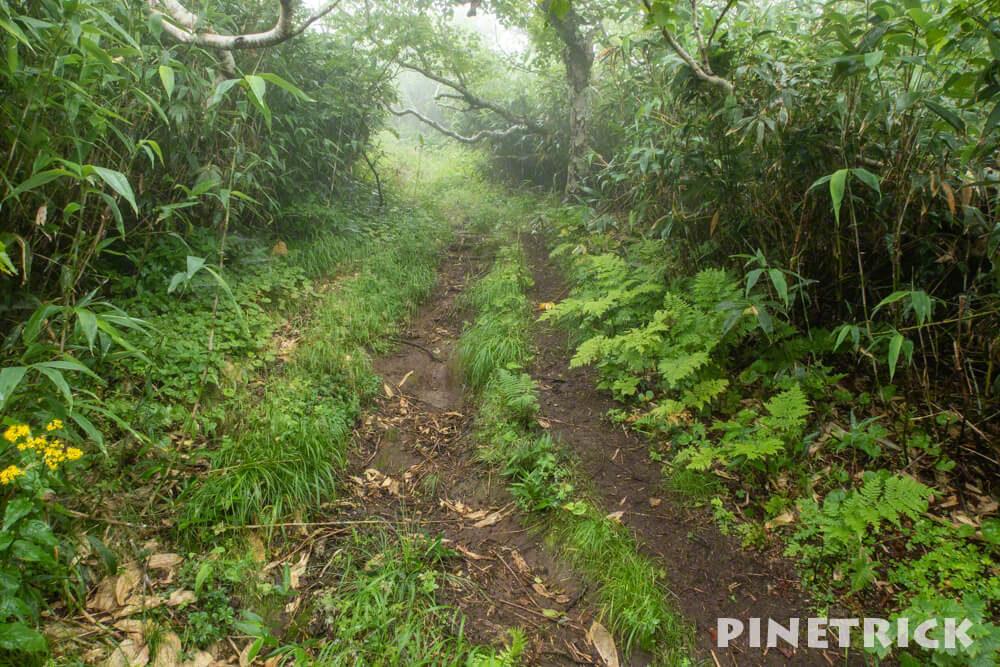 ニトヌプリ 登山 ニセコ 山道