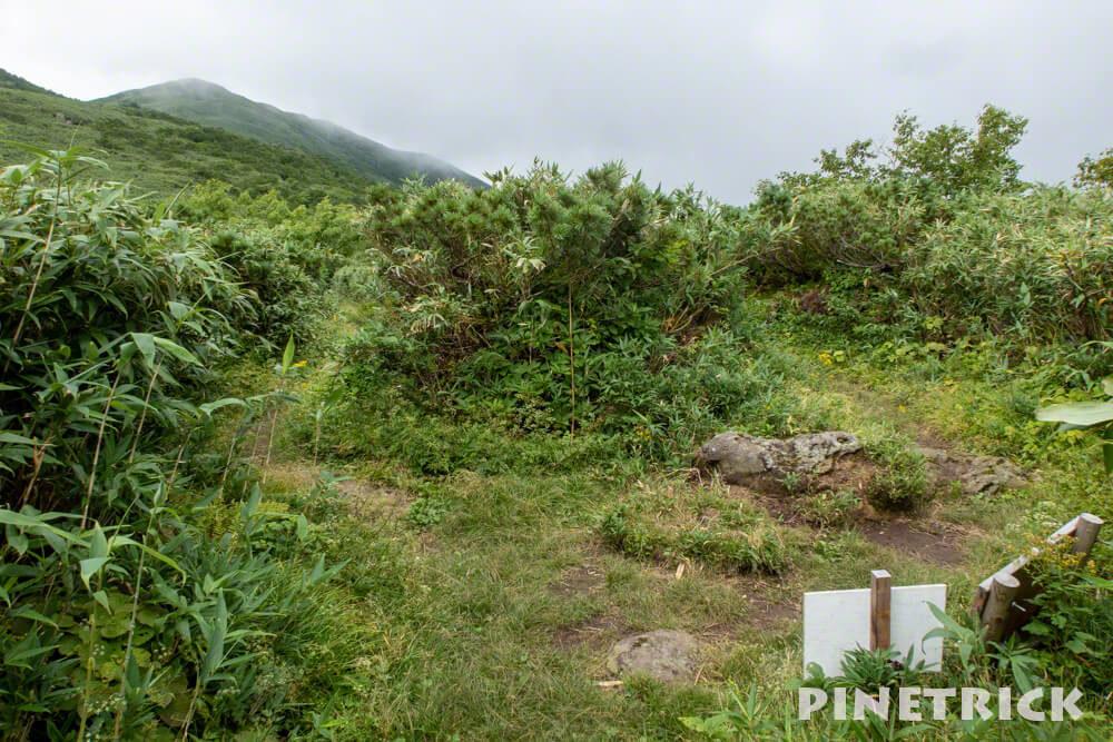 シャクナゲ岳 長沼 神仙沼 分岐 ニセコ 登山 トレッキング ツアー