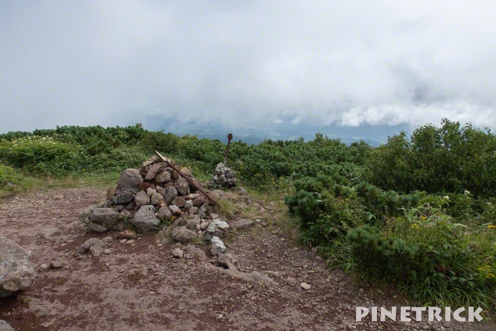 チセヌプリ 山頂 ハイマツ ニセコ 登山