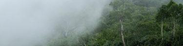 ニセコ 長沼 トレッキング 登山 神仙沼