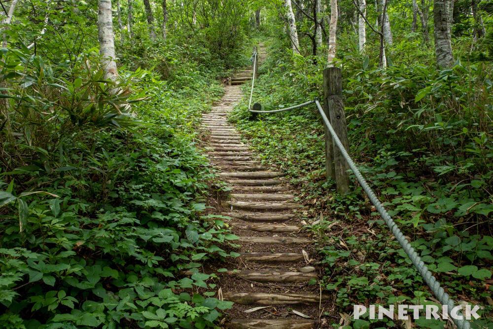 神居尻山 木階段 ロープ Aコース 登山