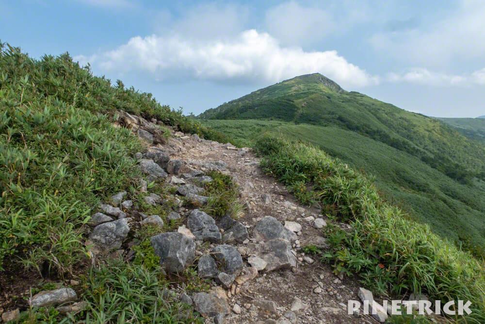 白樺山 ニセコ 登山 山道