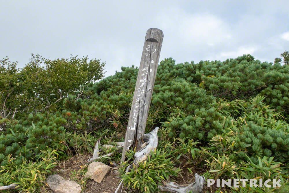 シャクナゲ岳 山頂 ニセコ 登山 トレッキング ハイキング