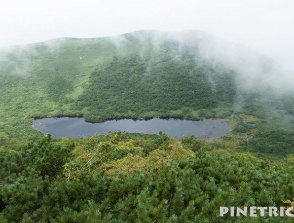 シャクナゲ沼 登山 ニセコ シャクナゲ岳 トレッキング ハイキング