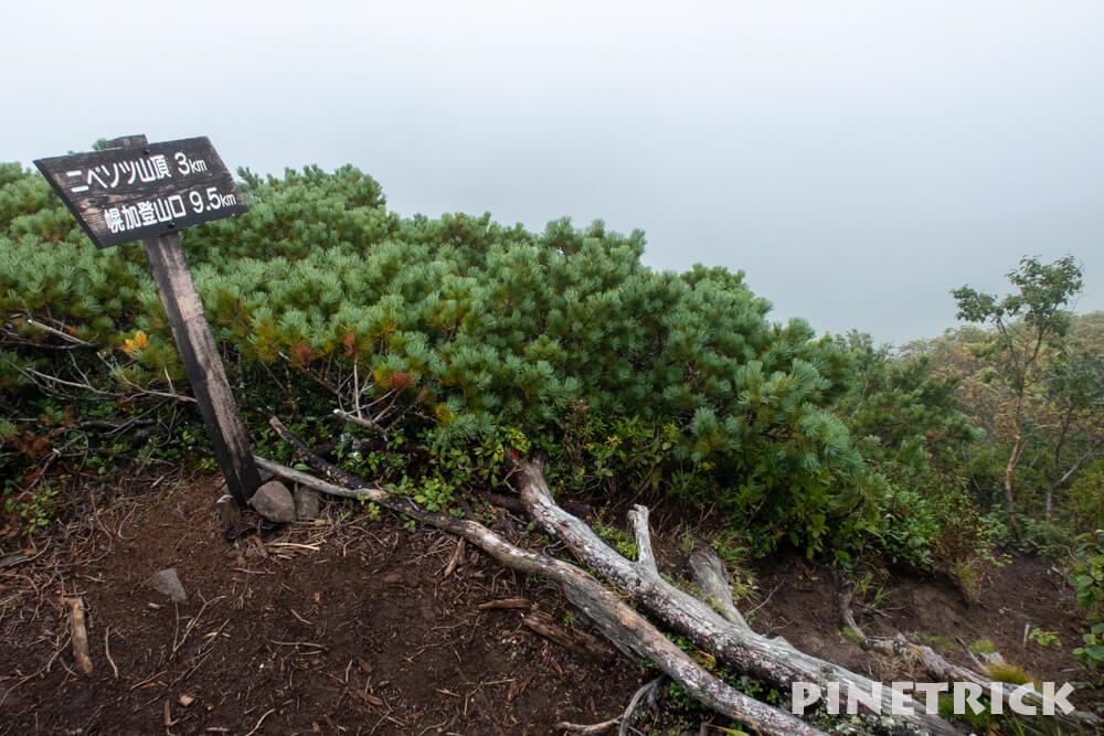 ニペソツ山 登山 登り返し 幌加温泉コース 北海道