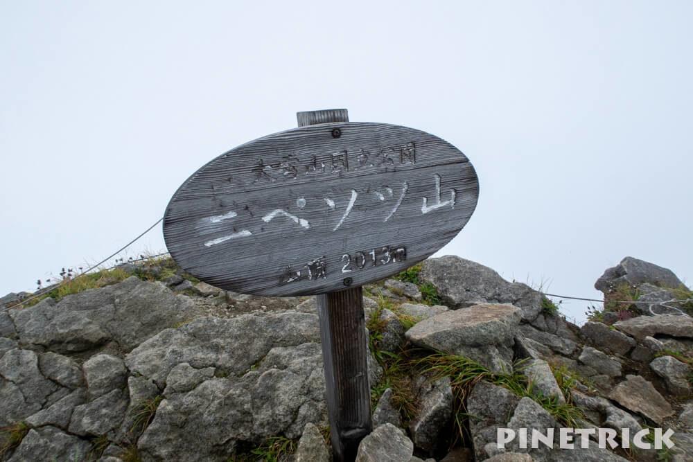 ニペソツ山 山頂 幌加温泉コース ガス 北海道 登山