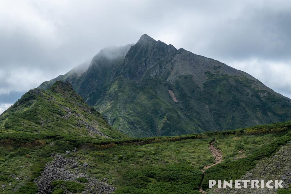 ニペソツ山 山容 登山 幌加温泉コース 2019年